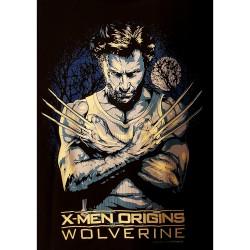 """X-men Origins """"Wolverine"""""""